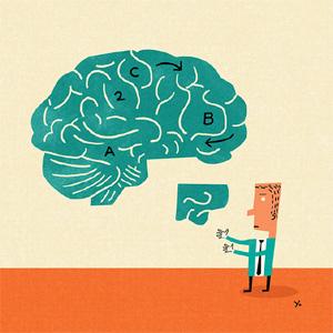 """Hurgando en los recovecos del cerebro """"marketero"""" actual"""