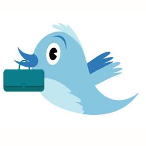 Descubra las 5 mejores opciones para desarrollar su perfil como marca en Twitter