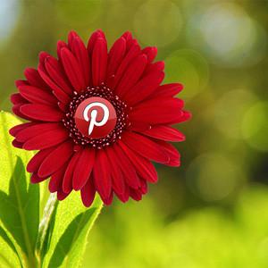 Pinterest coge músculo tras una nueva ronda de financiación y vale ya 5.000 millones de dólares