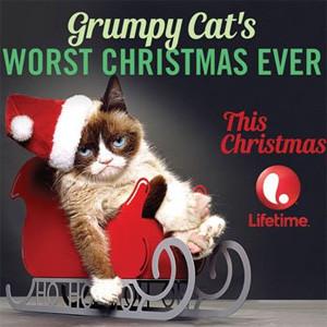 Tras triunfar en la red, el célebre minino Grumpy Cat maullará ahora en la pequeña pantalla