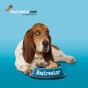 Rastreator.com, un buen un ejemplo de gestión y optimización del presupuesto de comunicación