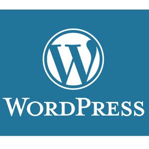 Un nuevo fallo de seguridad en Wordpress pone en alerta a millones de usuarios