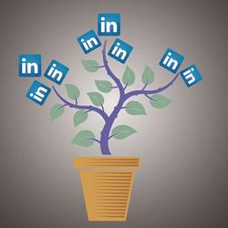 Buenos tiempos para LinkedIn: sus ingresos aumentan un 47%, siendo cerca del 20% procedente de la publicidad