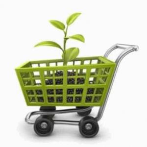 El 80% de los consumidores españoles tiene en cuenta el factor ecológico a la hora de comprar