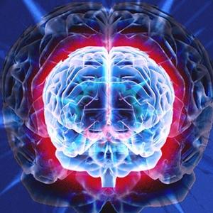"""¿Cómo """"ve"""" el cerebro un logotipo?"""