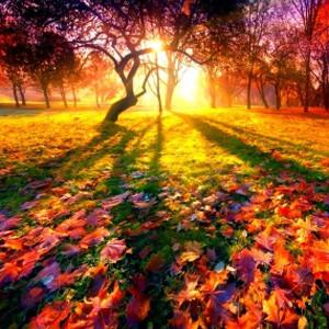 En otoño sigue luciendo con fuerza el sol en el universo