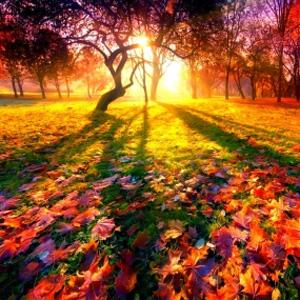 otoño y