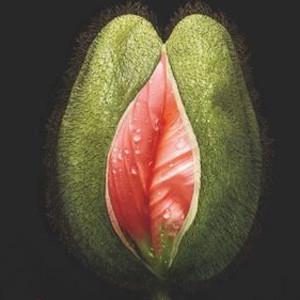 Flores sospechosamente parecidas a vaginas: así es este erótico anuncio de San Valentín