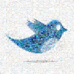 Twitter está probando diferentes diseños para mostrar varias imágenes en un solo tuit