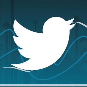 twitter followers seguidores