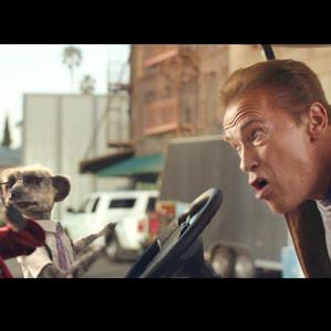 Dos suricatos 'atropellan' a Schwarzenegger en un anuncio publicitario