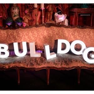 La marca de ginebra BULLDOG GIN celebra una fiesta en palacio sin las damas y caballeros de toda la vida