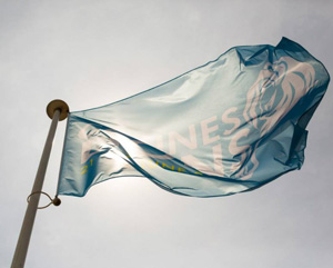 cannes bandera
