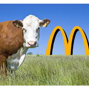 mcdonalds mcdonald's carne beef