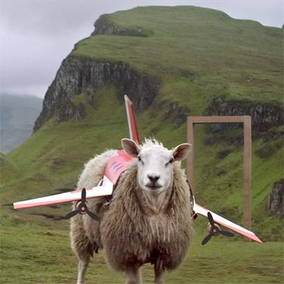 100 ovejas como metáfora: KAYAK y Jung von Matt/Spree estrenan campaña europea