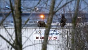Un superviviente de la masacre de Charlie Hebdo demanda a tres medios de comunicación franceses