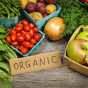 Productos orgánicos: para el 38% de los consumidores lo suyo es