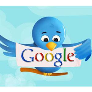 Twitter google 300