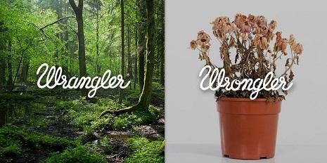 wrangler4