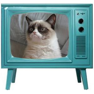 television tv (19)