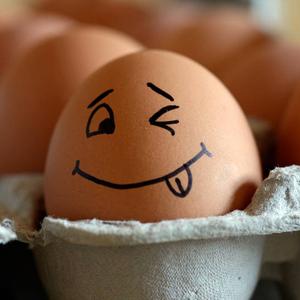 huevo 300