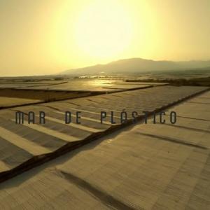 mar de plástico2
