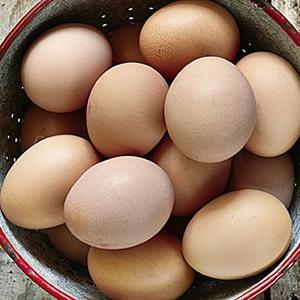 huevos 300