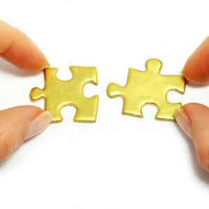 puzzle 300