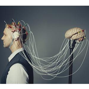 cerebro 300