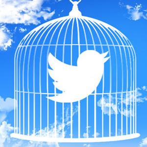 twitter 300
