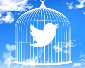 10 lecciones de los usuarios que Twitter debería aplicar (ya) si quiere volver a volar