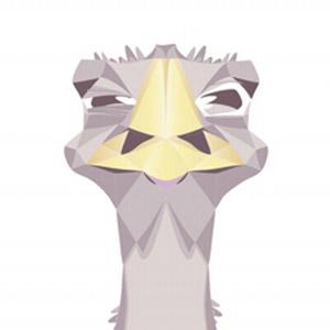 avestruz image