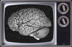 La neurociencia revela todo sobre la atención de los telespectadores a la TV #AedemoTV