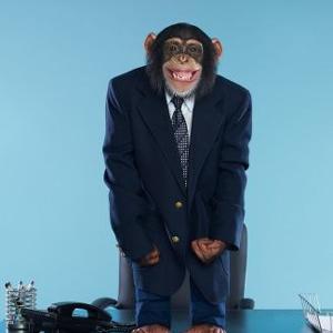 traje mono suit oficina trabajador