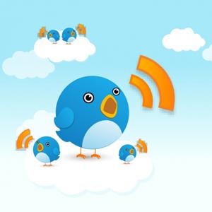 twitter-pajaro