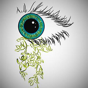vision