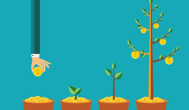 crecimiento-inversion