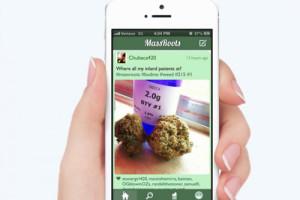 Sobre redes sociales no hay nada escrito y Massroots (y la marihuana) viene a confirmarlo