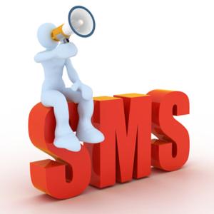 El SMS Push como herramienta de comunicación empresarial