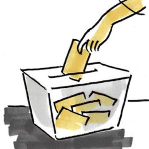 voto 300