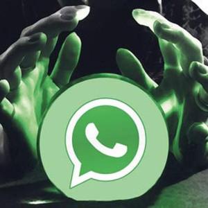 whatsapp 300