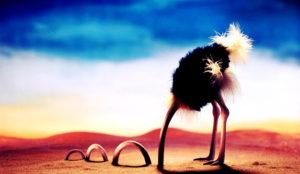 En los social media los CEOs continúan escondiendo la cabeza como el avestruz