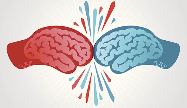 lucha batalla pelea cerebro