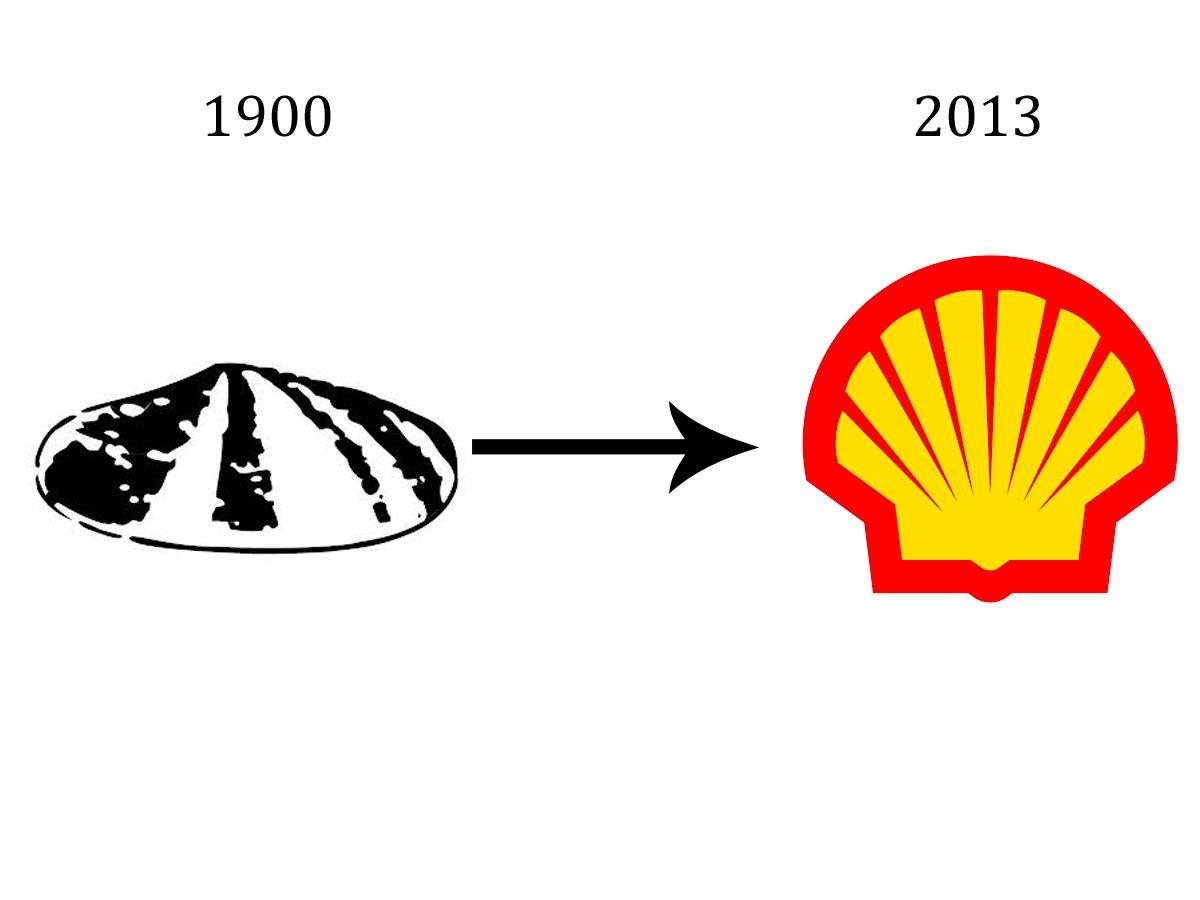 shell-12