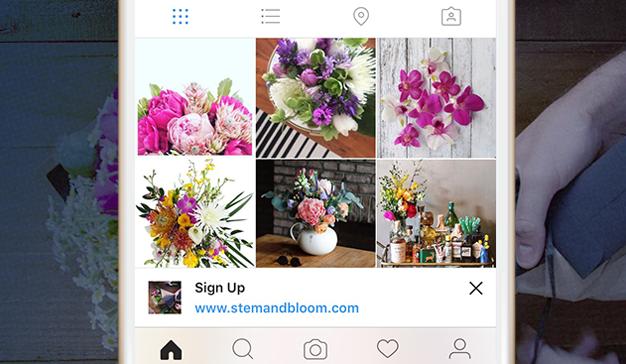 banner-ads-instagram-hed-2016