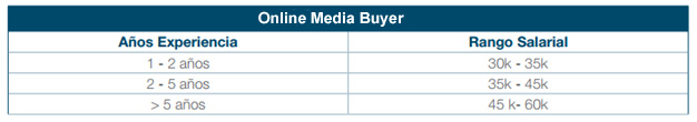 online media buyer