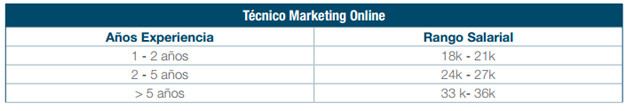 tecnico de marketing online