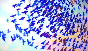 Twitter, a la caza de nuevos usuarios: reduce las notificaciones y pone filtro a los tuits
