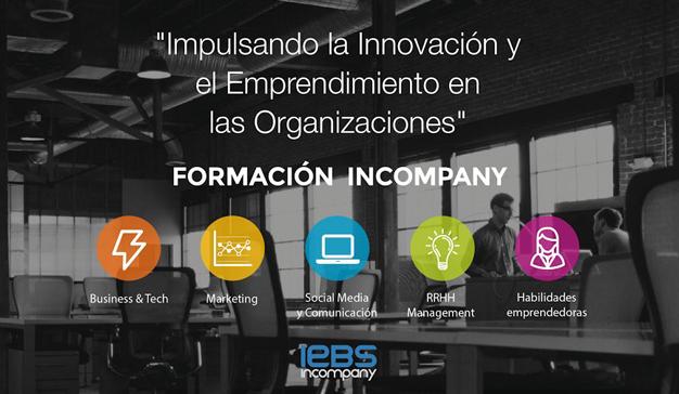 IEBS Incompany logo