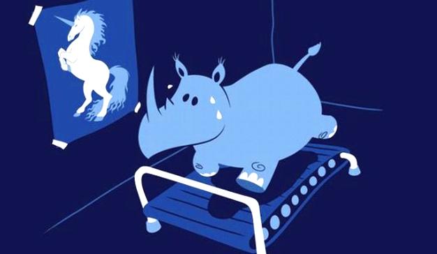hipopotamo-unicornio